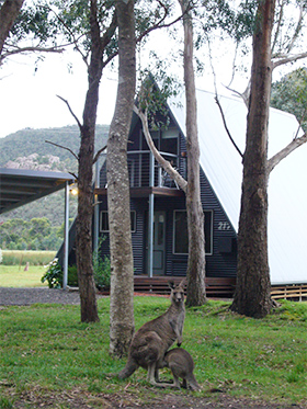 The A Frame Accommodation In Halls Gap Grampians National Park
